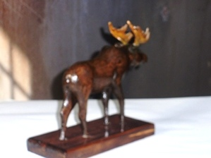 Woodcarving Young Bull  Moose