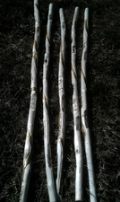 Hand Carved Story Canes